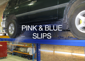 Pink and blue Slips